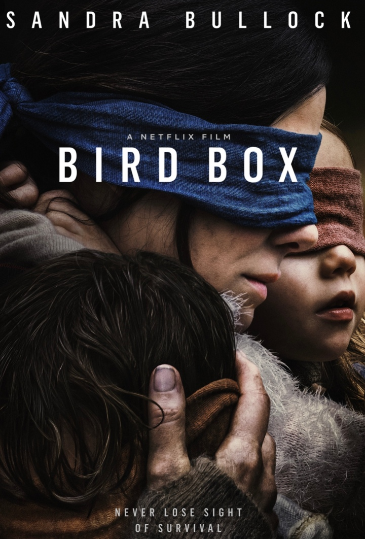 My Thoughts on the Netflix Film: Bird Box